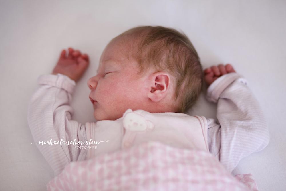 newborn shooting zu hause in duesseldorf