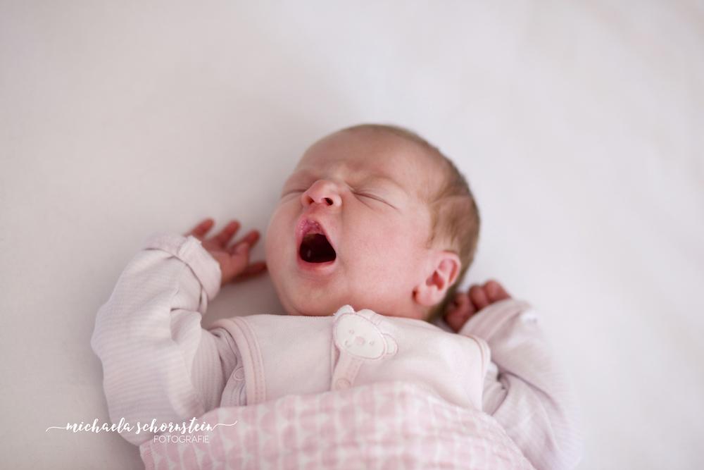 neugeborenen fotos in ratingen und mettmann